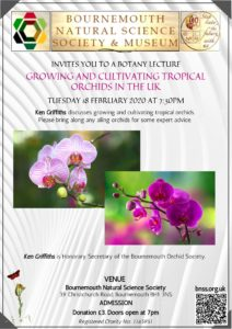 The growing and cultivation of Tropical Orchids in UK